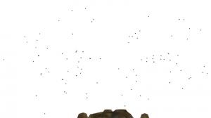 Fliegenschwarm